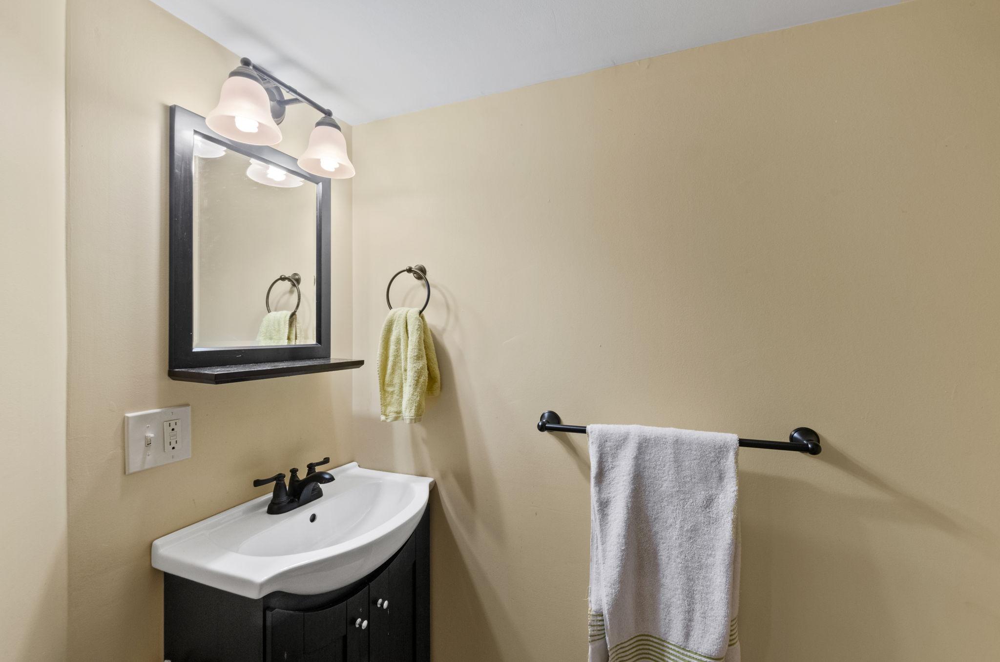 Basement Bathroom (2)