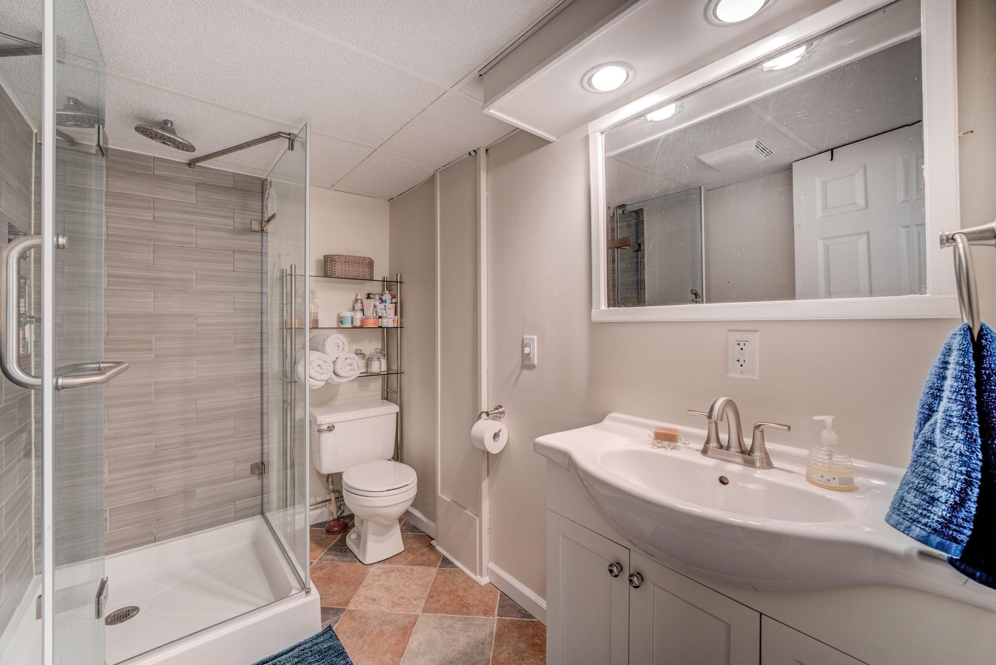 Lower Level - Bathroom