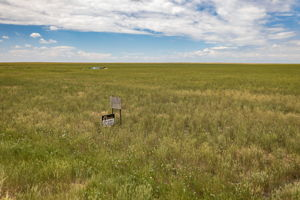 0 Co Rd 79, Briggsdale, CO 80611, US Photo 10