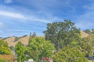 1349 Ptarmigan Dr, Walnut Creek, CA 94595, USA Photo 13